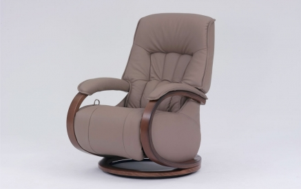 Mosel Recliner in Earth