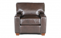 Albany Leather Chair in Guanaco Dark Brown
